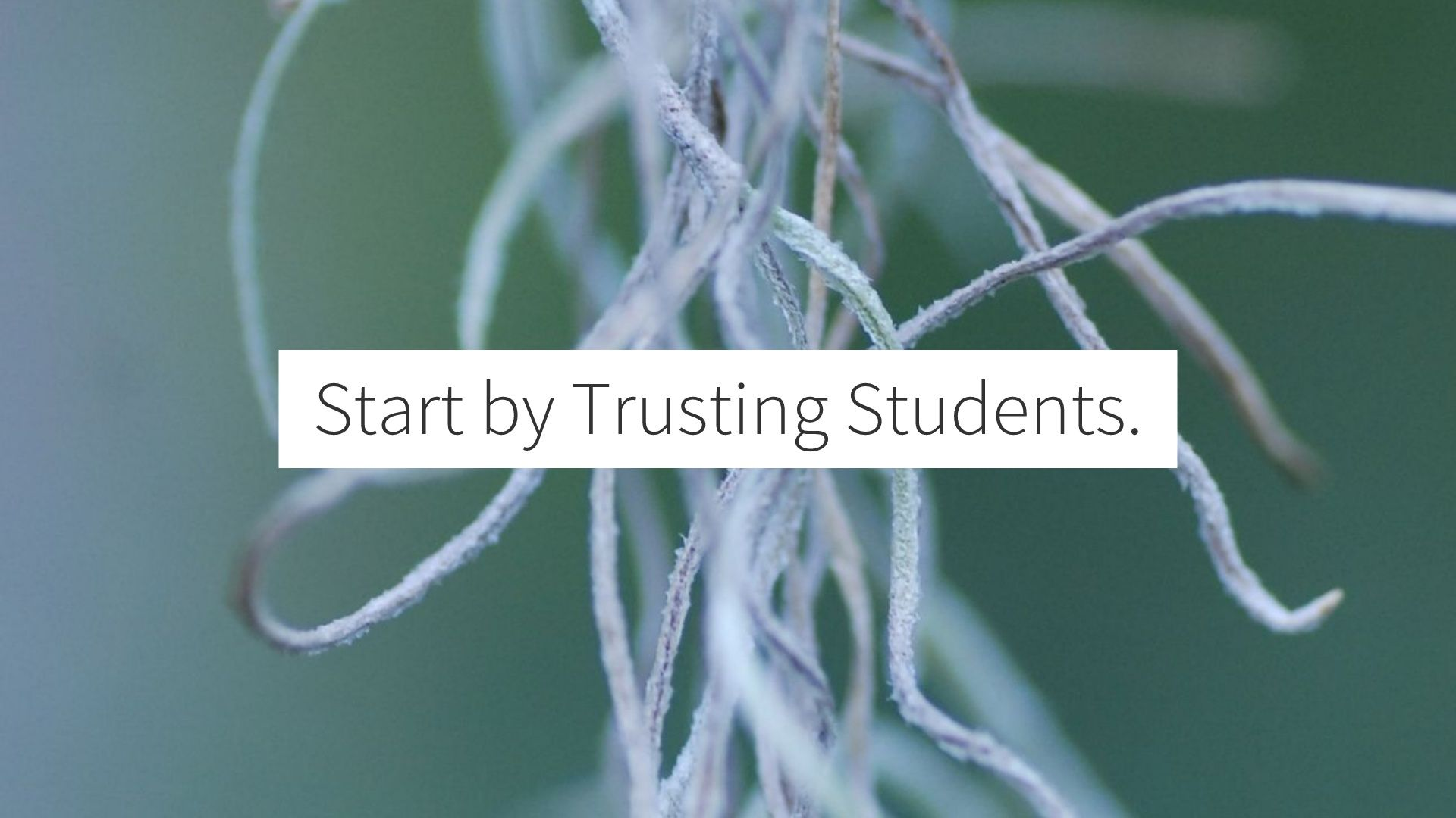 Start by Trusting Students w/ a sprig behind the words.